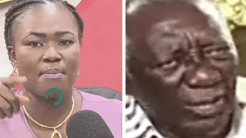 """""""Don't Compare yourself to Dr. Kwaku Oteng"""" – Nana Yaa Sakyiwaa added her voice to that of Kuffour."""