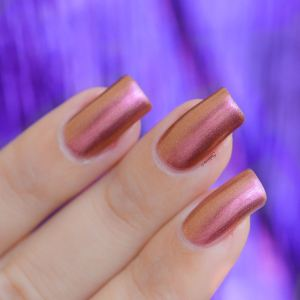 COLOR CLUB SORRY NOT SORRY