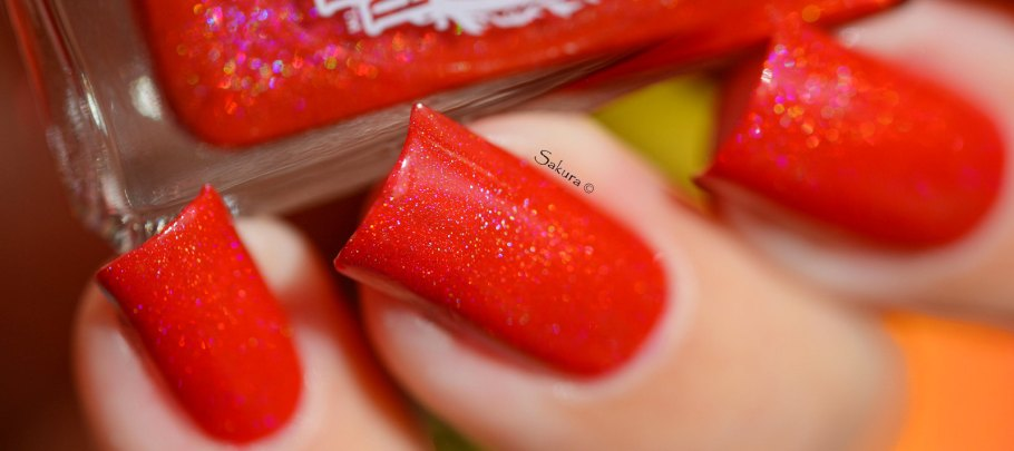 ENCHANTED POLISH FEBRUARY 2015