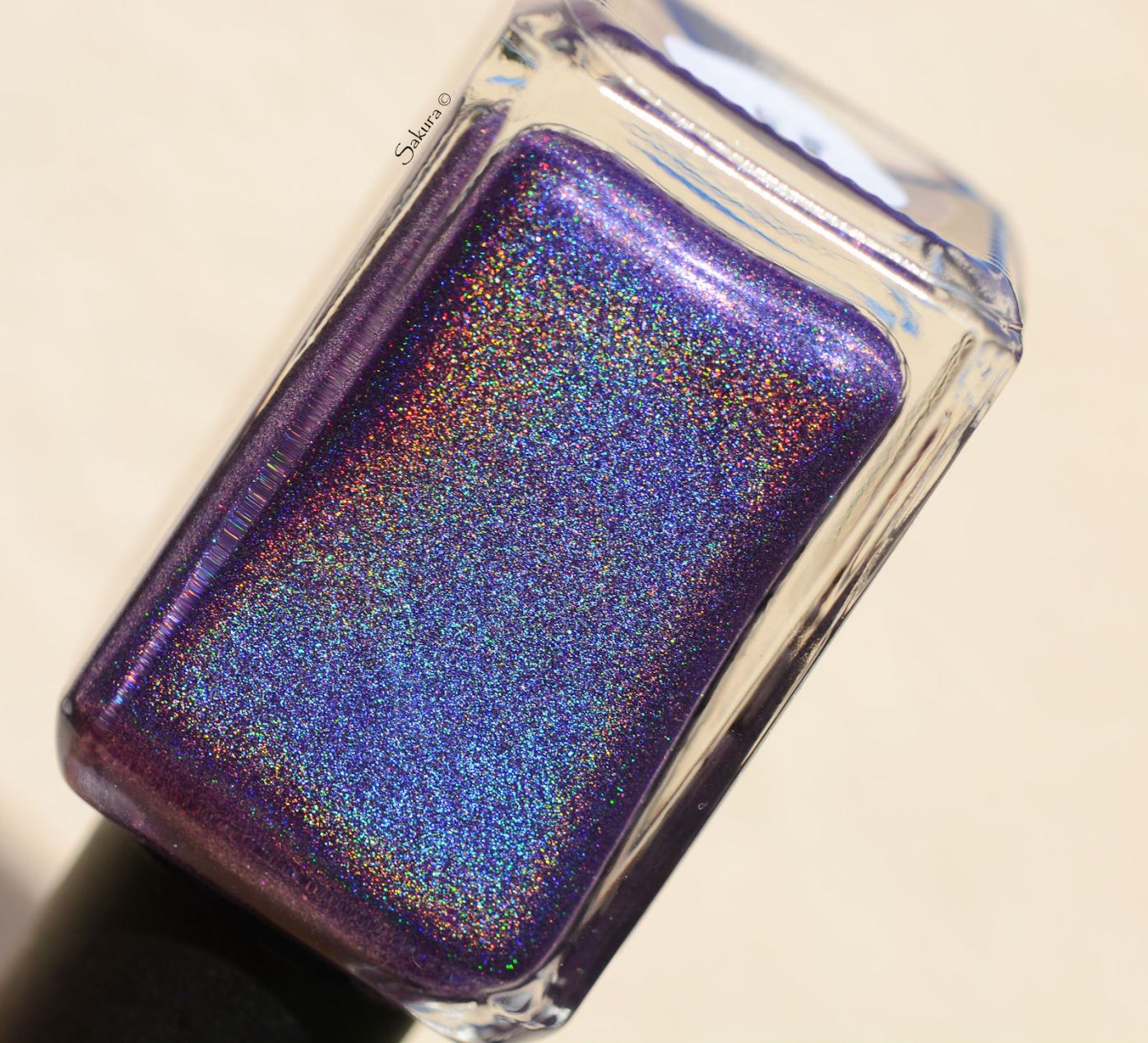 THE HOLO HOOKUP MARCH 6