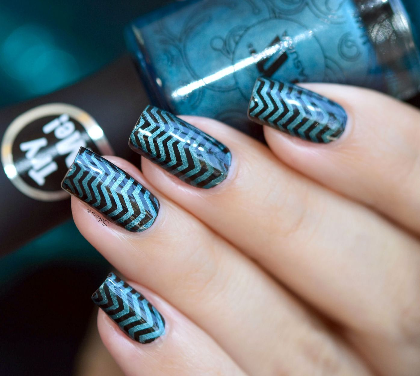 NAIL ART STAMPING GRADIENT MAGNETIC 2