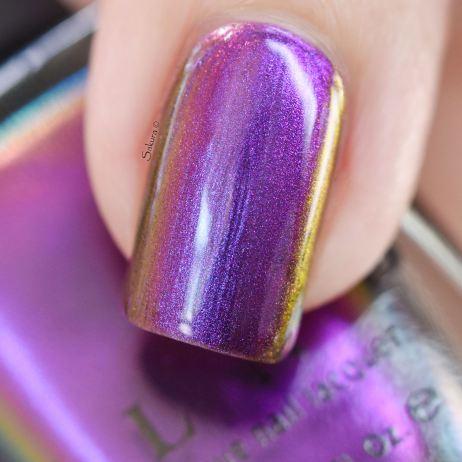 ILNP TILTED 5