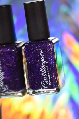 NEWS CADILLACQUER FAN COLLECTION 8