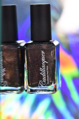 NEWS CADILLACQUER FAN COLLECTION 9
