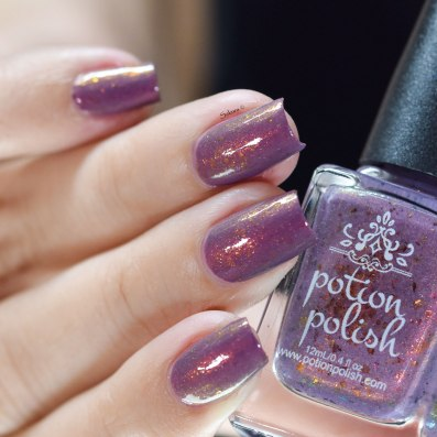 POTION POLISH STATE FAIR 3