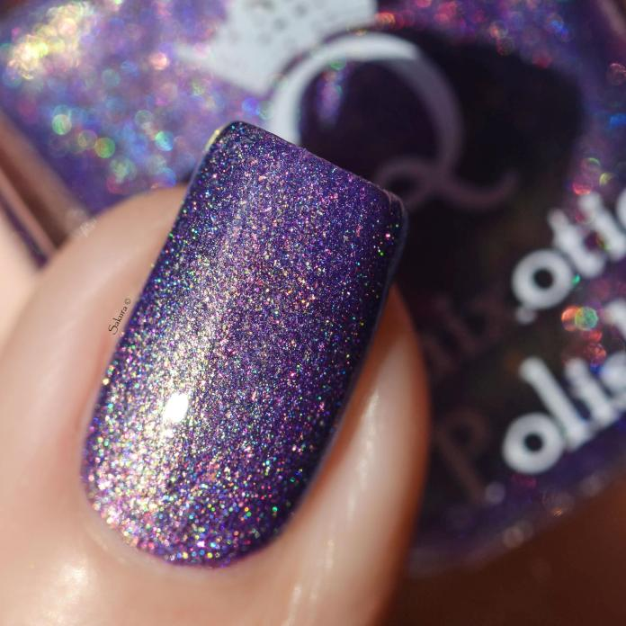 QUIZOTIC POLISH HOLD FAST TO DREAMS 7