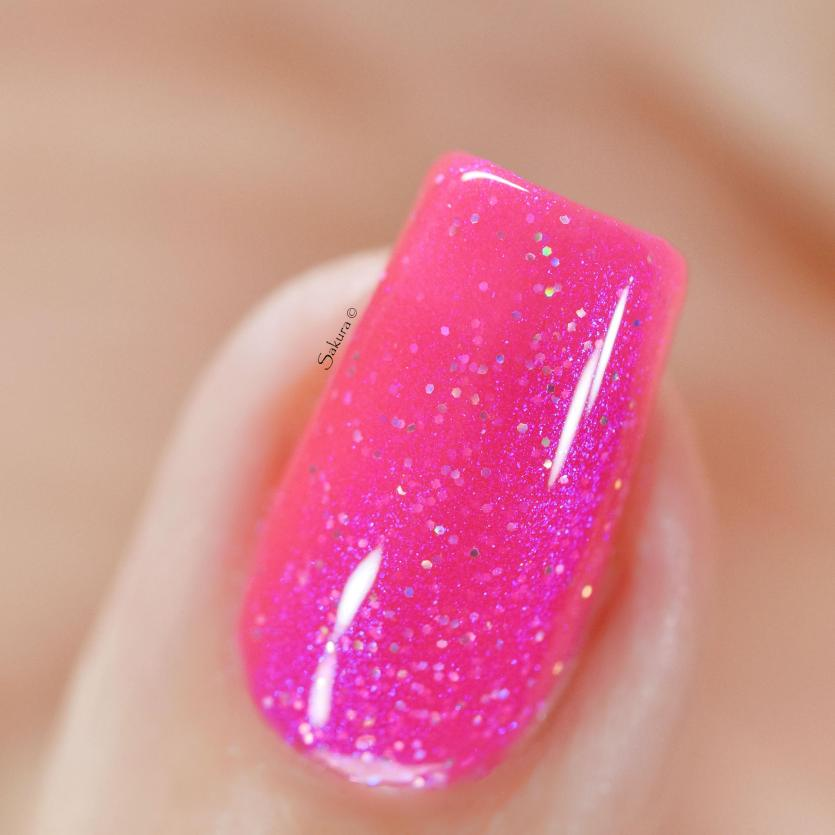 GLAMPOLIsH TWILLIGHT IN PARIS (2)