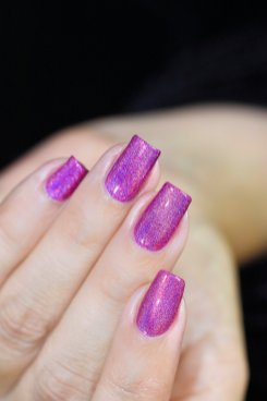 HOLO TACO Hot-Wire Pink 5