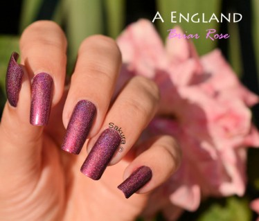 A ENGLAND BRIAR ROSE SLEEPING BEAUTY 2