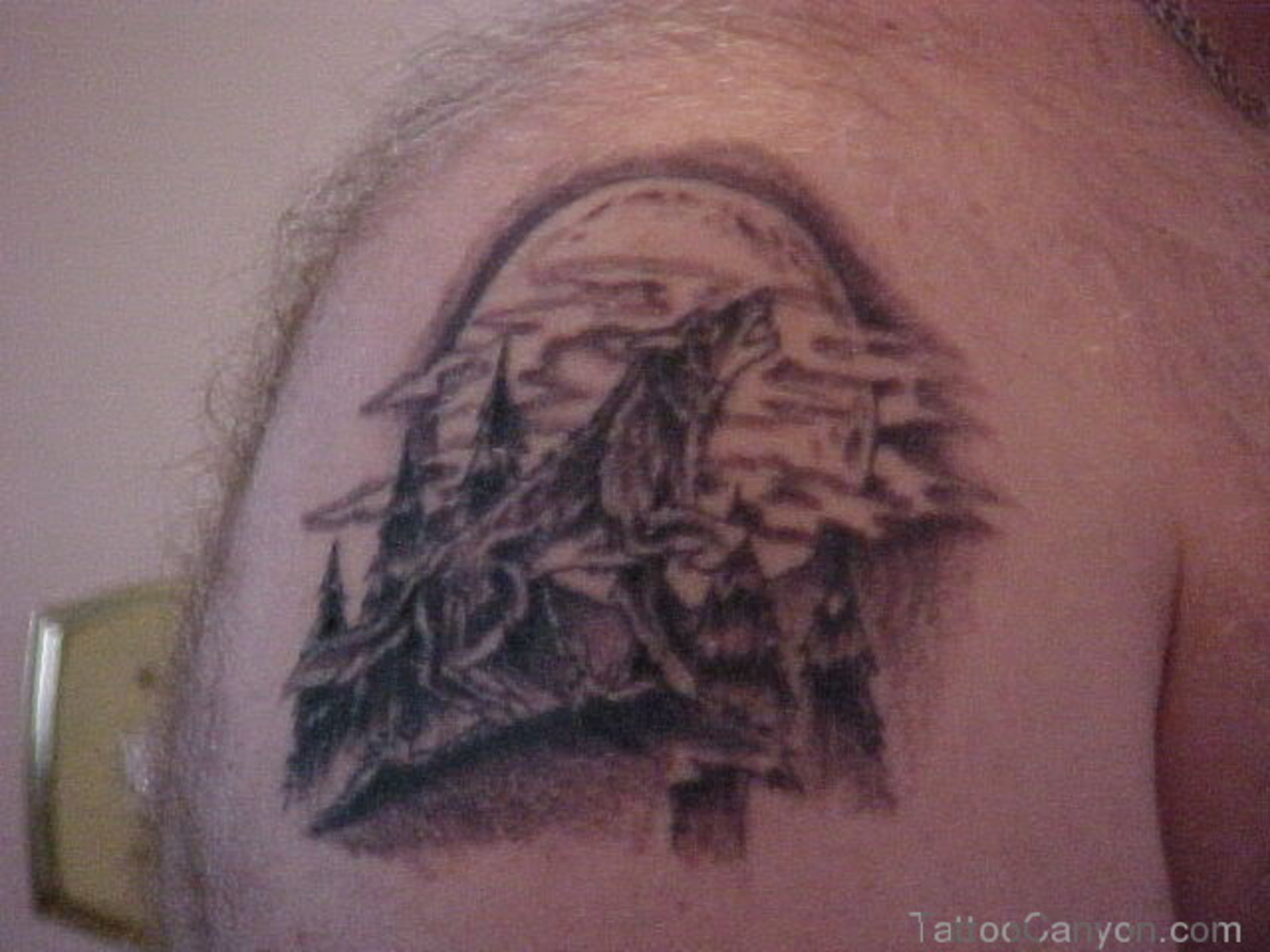 Howling Wolf Moon Tattoo