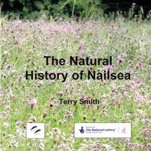 The Natural History of Nailsea