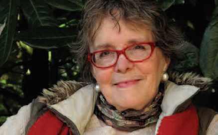 picture of Sue Limb