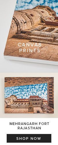 NainaCo-Luxury-Lifestyle-Photographer-Storyteller-Canvas-Print-Store-Shop
