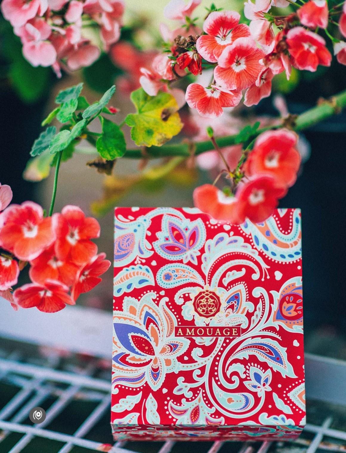 Naina Redhu, Naina.co, #FragranceOfTheMonth, ScentSutra, Bracken, Amouage, Midnight Flower Collection, Bracken Women, Perfume, Artisanal Fragrances, Exquisite Perfume, Luxury, Niche, EyesForLuxury, EyesForDestinations, Mussoorie, JW Marriott, Marriott International, Walnut Grove, Resort, Spa, Cedar Spa, Uttarakhand, Mussoorie, Tourism, Travel, India, EyesForIndia, Content Strategist, Content Strategy, Incredible India, Digital Strategy, Online Strategy, Content Queen, Marriott Mussoorie, Content Queen, Lifestyle Photographer, Photography, Professional Photographer, Lifestyle Blogger, Lifestyle Content, Travel Blogger, Travel Photographer, Travel Content