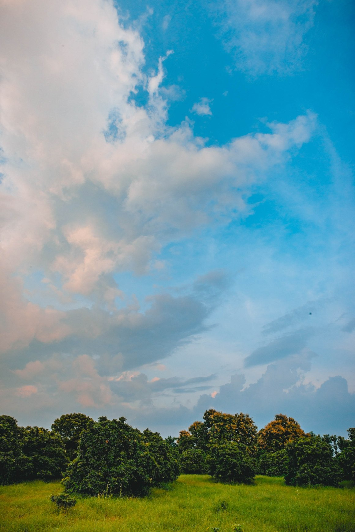 Ranikhet, Uttarakhand, EyesForDestinations, EyesForIndia, EyesForRanikhet, EyesForUttarakhand, NainaxRanikhet, Travel Photographer, Destination Photographer, Travel Photography, Destination Photography, Resort, Hospitality, Lifestyle, Travel Blogger, Lifestyle Blogger, Vacation, Road Trip, India, Professional Photographer, Luxury, Lifestyle, Blogger, Feature, Story, Landscape Photographs, Landscape Photographer India, Landscape Photographer