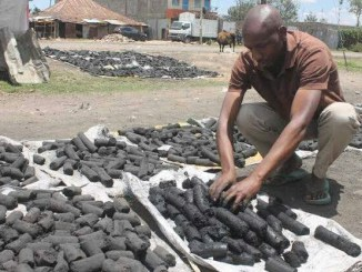 How to start charcoal business in Nigeria
