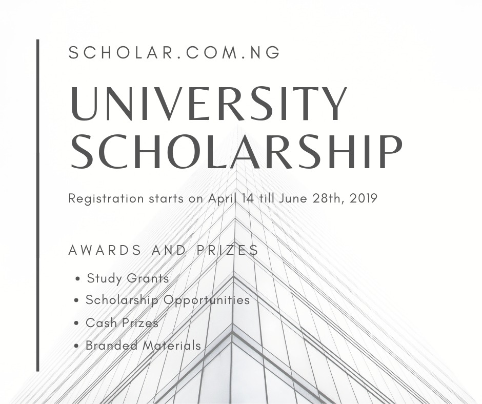 2019 University Scholarship For Undergraduate&masters