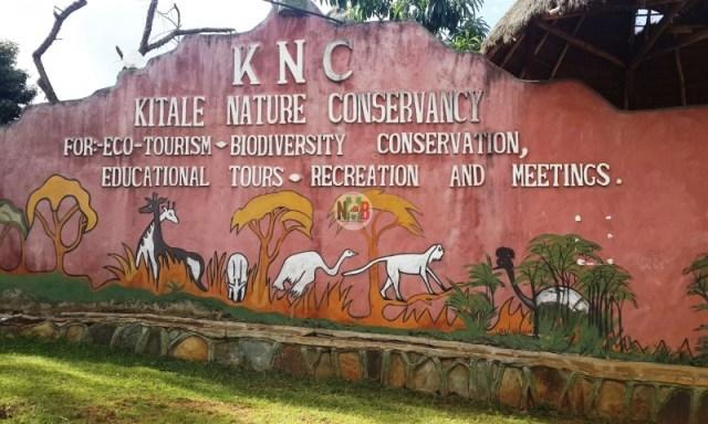 Kitale Nature Conservancy