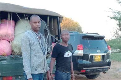 GSU arrested 730x414 2