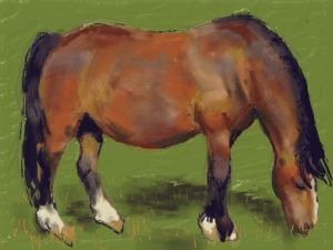 Art Academy for 3ds Painting – Tubby Horse