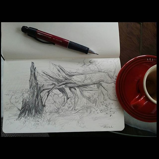 ...there's something about fallen trees that I find tragic. Here's a sketch for the beautiful age-old trees that have fallen around the lower mainland today.