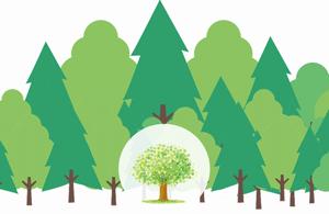 木を見て森を見ずのイメージ図