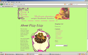 Wordpress site for Fizzy Lizzy