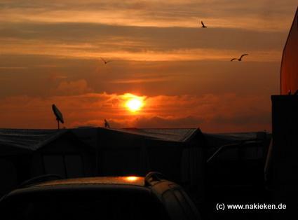 Sonnenuntergang auf dem Campingplatz