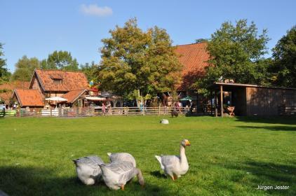 Hotel Hannover Nahe Zoo