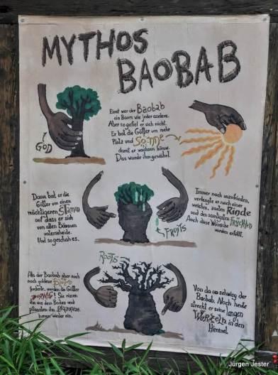 Mythos Baobab