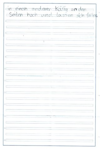 Grundschulaufsatz über Hamster - Seite 2
