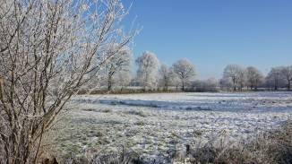 Schnee in Pfalzdorf, Ostfriesland