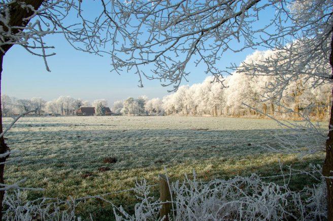 Winter zwischen Schirum und Aurich