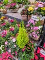 Blumencenter