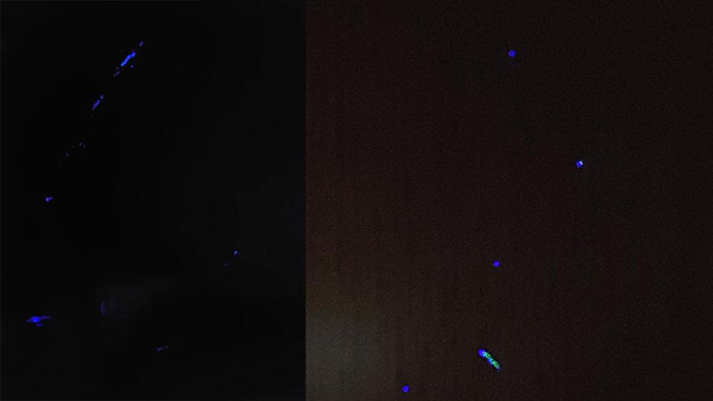 s6 передняя камера фиолетовое пятно