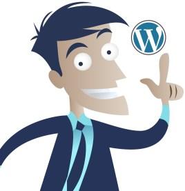 WordPress idea man