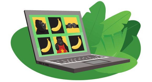 Gorilla on Instagram