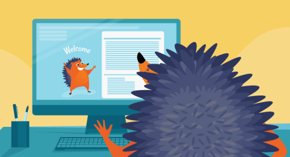 Hedgehog working on portfolio website