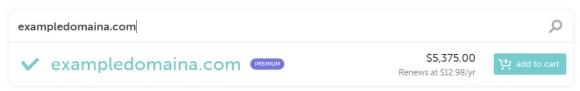 premium domain example