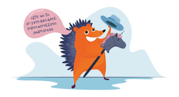 Hedgehog going to an IP address on a toy unicorn
