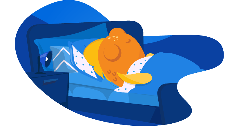 fish sleeping in a bed
