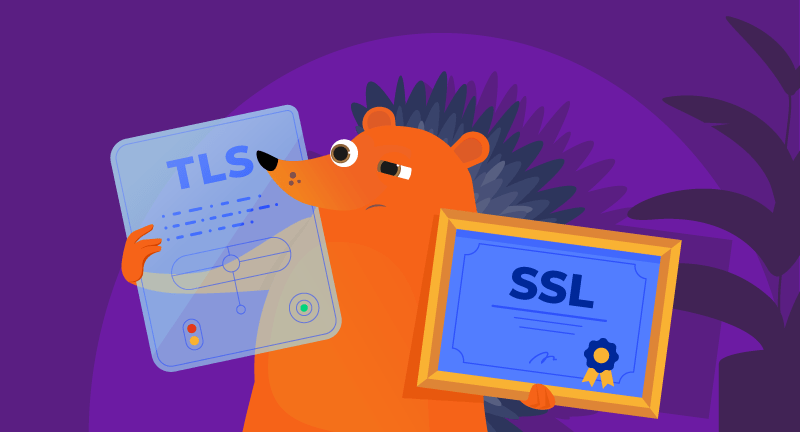 Hero image of SSL vs TLS Certificates – What You Need to Know