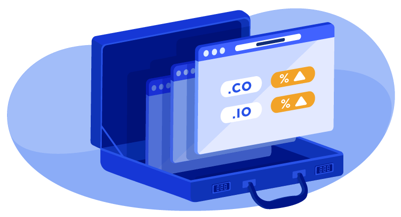 .co and .io domains in a briefcase