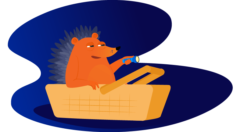 hedgehog sitting in picnic basket with flashlight