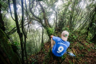 laos-cloud-forest-npa-protected-trek