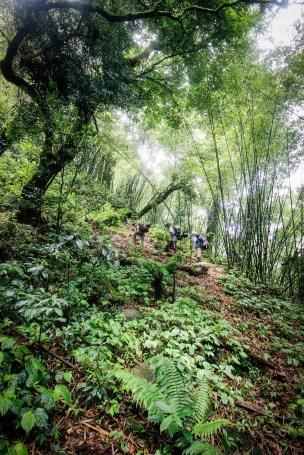 trek-laos-cloud-forest-protected-namet