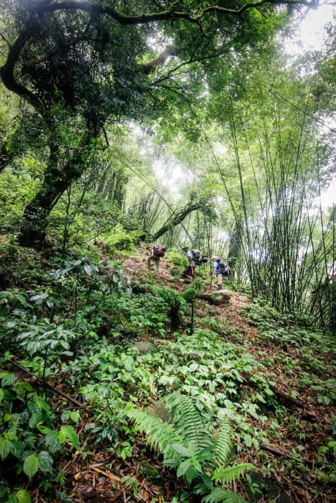 trek-laos-cloud-forest-protected-namet