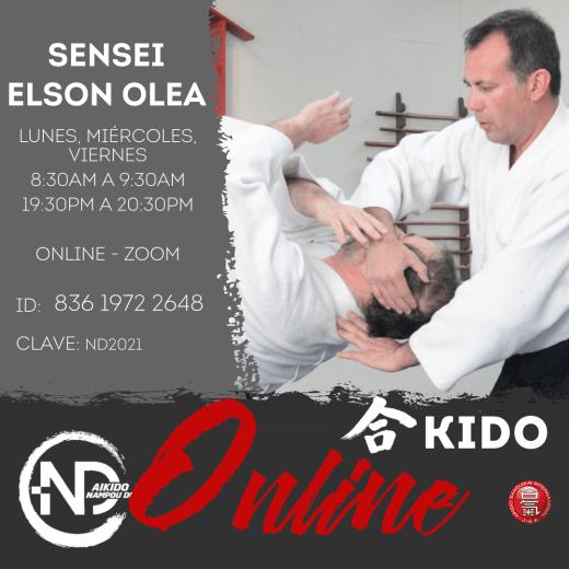 Horarios de Aikido Online Nampou Dojo Las Condes