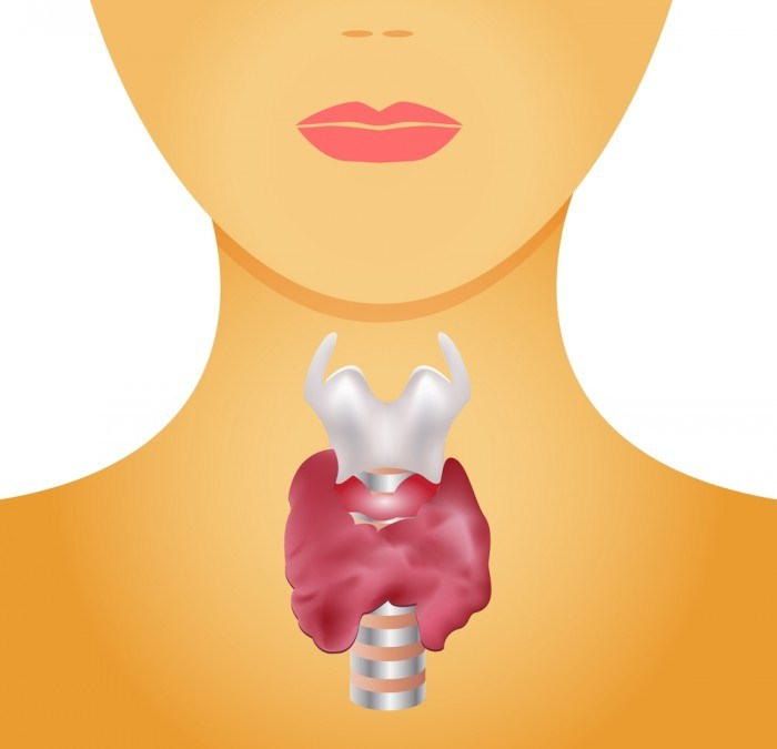 Naturopathie et glande thyroide