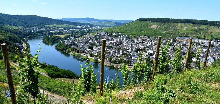 Vallée de la Moselle et du Rhin Allemande: à 3h de Nancy, n'hésitez pas à changer d'air!